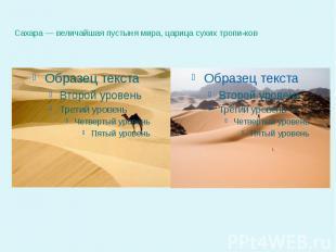 Сахара — величайшая пустыня мира, царица сухих тропиков