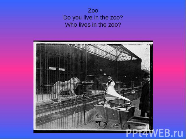 ZooDo you live in the zoo?Who lives in the zoo?