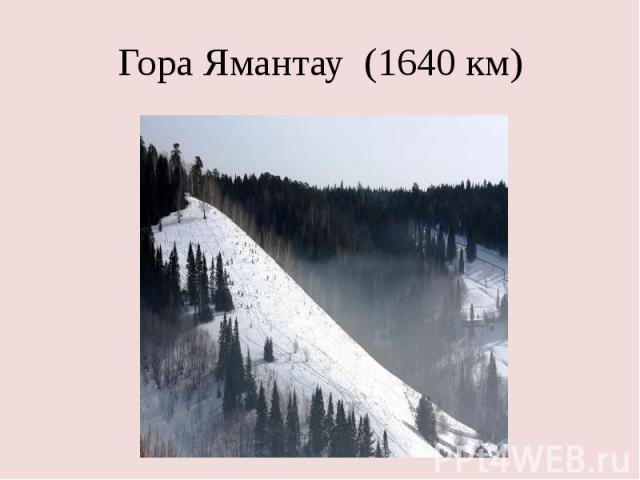Гора Ямантау (1640 км)