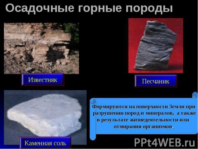 Осадочные горные породы Формируются на поверхности Земли при разрушении пород и минералов, а такжев результате жизнедеятельности или отмирания организмов.