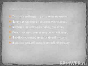 «Приметы» А.С.Пушкин: Старайся наблюдать различные приметы.Пастух и земледел в м