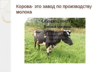 Корова- это завод по производству молока