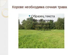 Корове необходима сочная трава