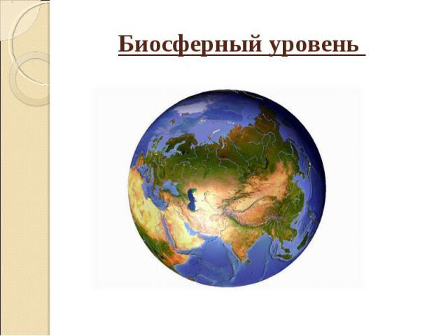 Биосферный уровень