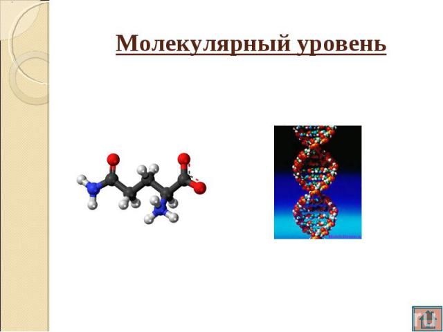 Молекулярный уровень