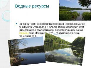 Водные ресурсы На территории заповедника протекает несколько малых рек (Пушта, А