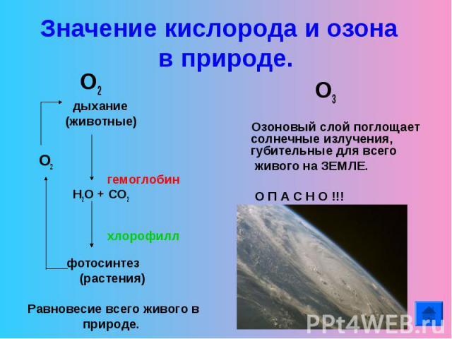 Значение кислорода и озона в природе. О2 дыхание (животные) О2 гемоглобин Н2О + СО2 хлорофилл фотосинтез (растения)Равновесие всего живого в природе. О3 Озоновый слой поглощает солнечные излучения, губительные для всего живого на ЗЕМЛЕ. О П А С Н О …