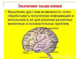 Мышление дает нам возможность точно обрабатывать полученную информацию и использ