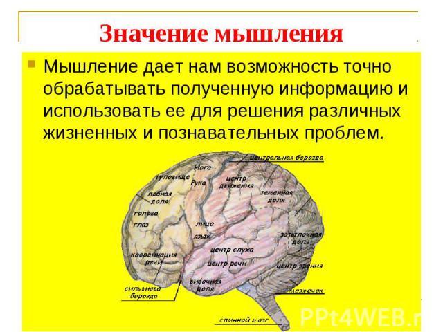 Мышление дает нам возможность точно обрабатывать полученную информацию и использовать ее для решения различных жизненных и познавательных проблем.