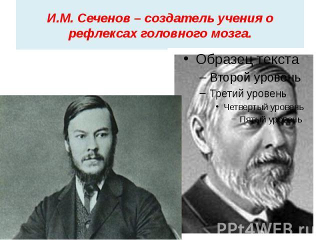 И.М. Сеченов – создатель учения о рефлексах головного мозга.