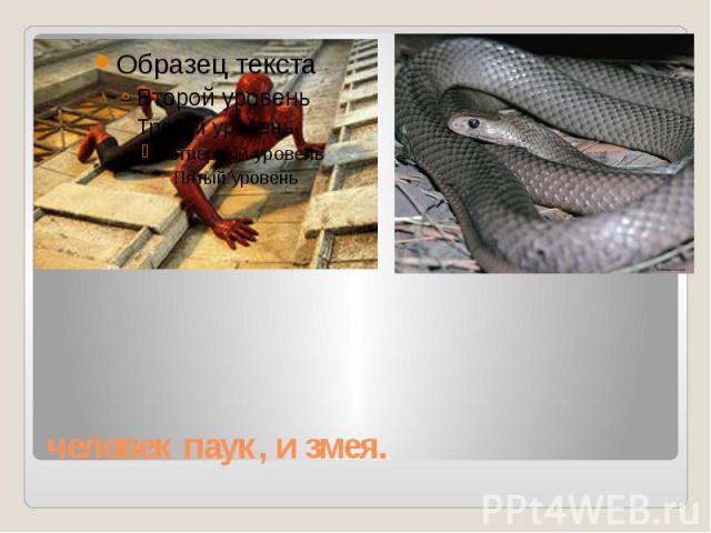 человек паук, и змея.