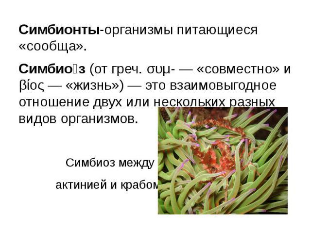 Симбионты-организмы питающиеся «сообща».Симбиоз(от греч. συμ- — «совместно» и βίος — «жизнь») — этовзаимовыгодное отношение двух или нескольких разных видов организмов. Симбиоз между актинией и крабом.
