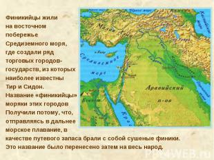 Финикийцы жили на восточном побережье Средиземного моря, где создали ряд торговы