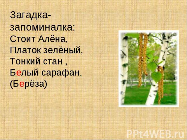 Загадка-запоминалка:Стоит Алёна,Платок зелёный,Тонкий стан ,Белый сарафан.(Берёза)