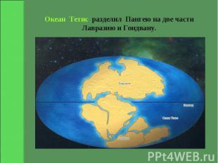 Океан Тетис разделил Пангею на две части Лавразию и Гондвану.