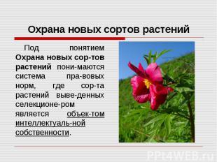 Охрана новых сортов растений Под понятием Охрана новых сор-тов растений пони-маю