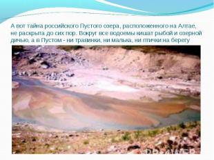 А вот тайна российского Пустого озера, расположенного на Алтае, не раскрыта до с