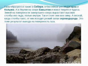Газы образуются также в Сибири, в бассейнах рек Индигирка и Колыма. А в Якутии н