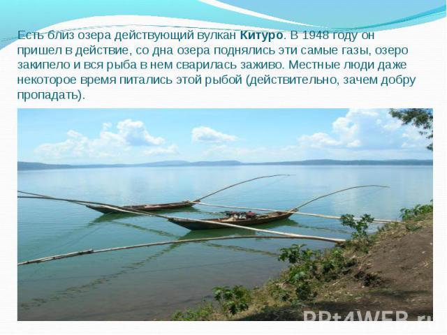 Есть близ озера действующий вулкан Китуро. В 1948 году он пришел в действие, со дна озера поднялись эти самые газы, озеро закипело и вся рыба в нем сварилась заживо. Местные люди даже некоторое время питались этой рыбой (действительно, зачем добру п…