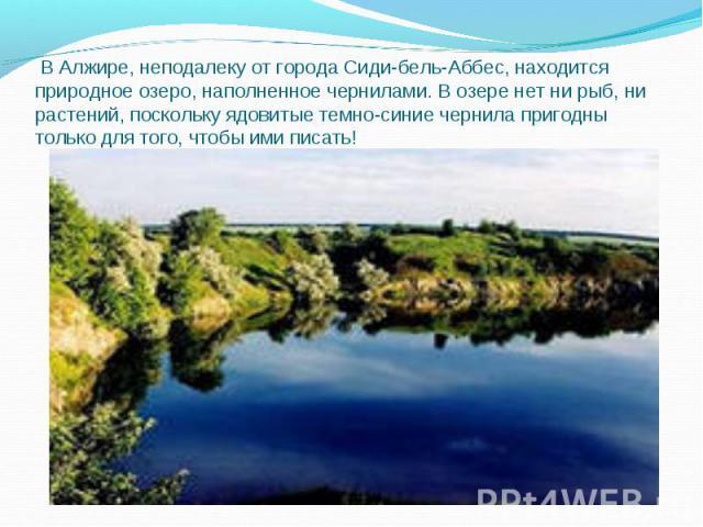 В Алжире, неподалеку от города Сиди-бель-Аббес, находится природное озеро, наполненное чернилами. В озере нет ни рыб, ни растений, поскольку ядовитые темно-синие чернила пригодны только для того, чтобы ими писать!