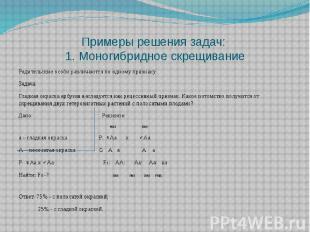Решение задач с ответами на моногибридное скрещивание билеты экзамен категория с д