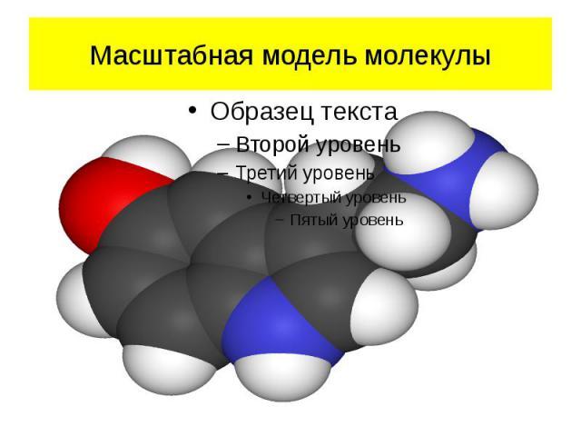 Масштабная модель молекулы