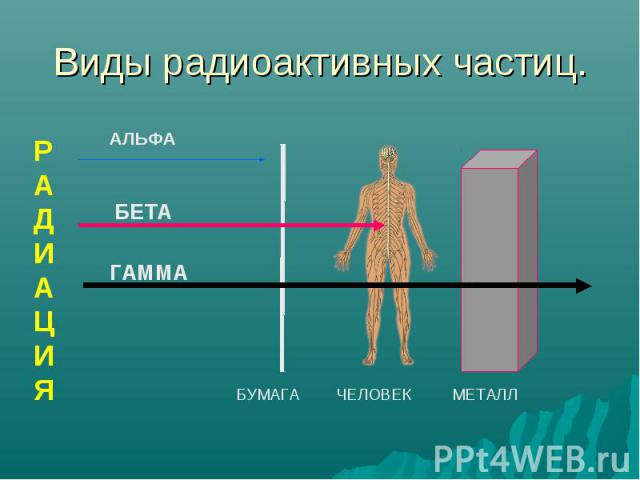 Виды радиоактивных частиц. РАДИАЦИЯ