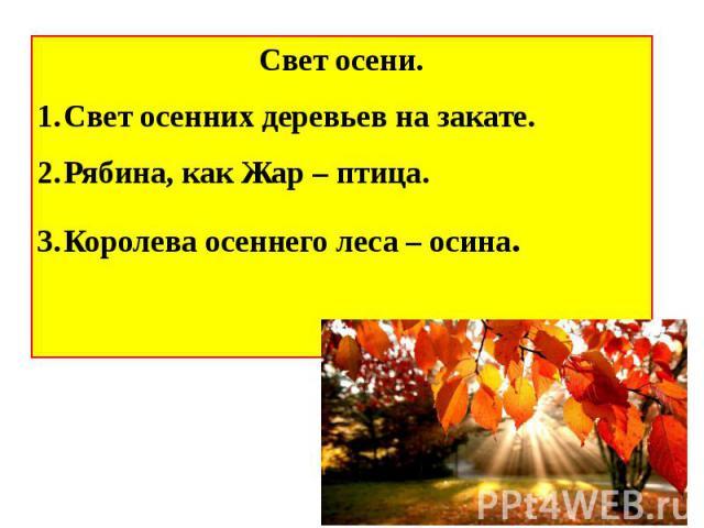 Свет осени.Свет осенних деревьев на закате.Рябина, как Жар – птица.Королева осеннего леса – осина.