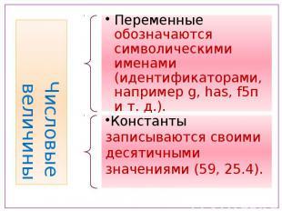 Числовые величины Переменные обозначаются символическими именами (идентификатора
