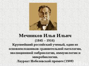 Мечников Илья Ильич(1845 – 1916) Крупнейший российский ученый, один из основопол