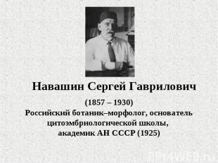Навашин Сергей Гаврилович (1857 – 1930)Российский ботаник–морфолог, основатель ц