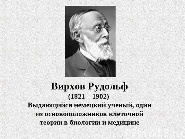 Вирхов Рудольф(1821 – 1902) Выдающийся немецкий ученый, один из основоположников клеточной теории в биологии и медицине