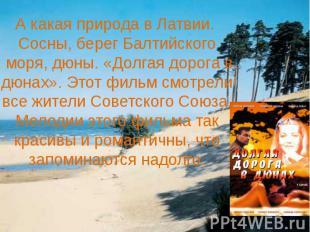 А какая природа в Латвии. Сосны, берег Балтийского моря, дюны. «Долгая дорога в