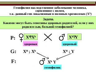 Гемофилия наследственное заболевание человека, сцепленное с полом, т.к. данный г