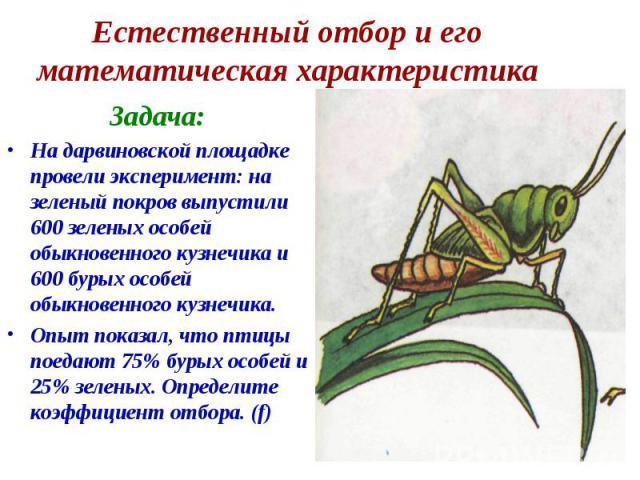 Естественный отбор и его математическая характеристика Задача:На дарвиновской площадке провели эксперимент: на зеленый покров выпустили 600 зеленых особей обыкновенного кузнечика и 600 бурых особей обыкновенного кузнечика. Опыт показал, что птицы по…