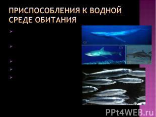 Приспособления к водной среде обитания обтекаемая форма теланаличие слизи на тел