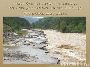 Сели – бурные грязекаменные потоки, возникающие после сильных ливней или при инт