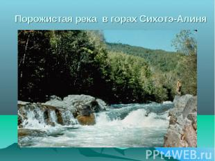Порожистая река в горах Сихотэ-Алиня