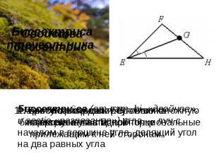 Свойства биссектрис Биссектриса треугольника Биссектриса(отлат.bi-«двойное»,