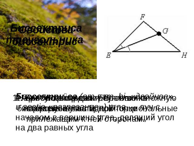 Свойства биссектрис Биссектриса треугольника Биссектриса(отлат.bi-«двойное», иsectio«разрезание») угла—лучс началом в вершинеугла, делящий угол на два равных угла 2. Биссектриса делит противоположную сторону на части, пропорциональные прил…