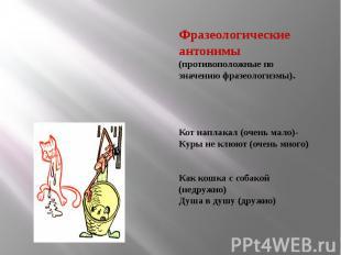 Фразеологические антонимы (противоположные по значению фразеологизмы).Кот наплак