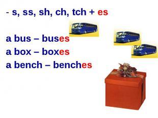 s, ss, sh, ch, tch + esa bus – busesa box – boxesa bench – benches