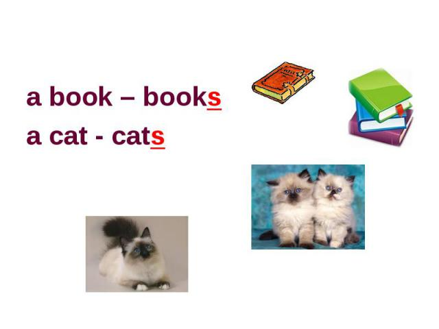 a book – booksa cat - cats