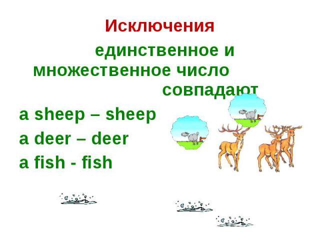 Исключения единственное и множественное число совпадаютa sheep – sheepa deer – deer a fish - fish