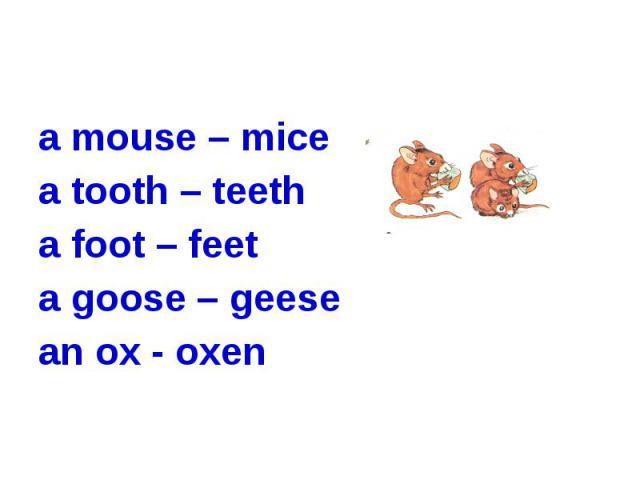 a mouse – mice a tooth – teetha foot – feeta goose – geesean ox - oxen