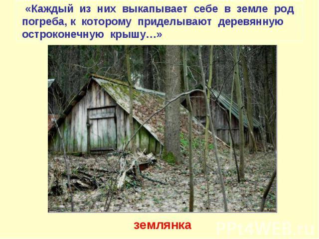 «Каждый из них выкапывает себе в земле род погреба, к которому приделывают деревянную остроконечную крышу…» землянка