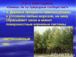 УЭ-3 Викторина «Знаешь ли ты природные сообщества?» 2. Деревья прекрасно приспос