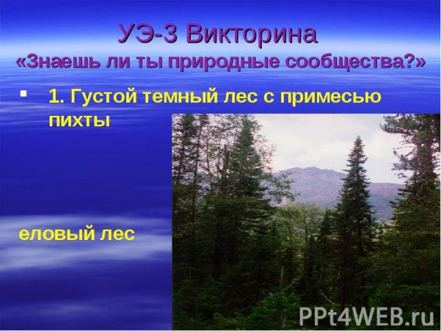 УЭ-3 Викторина «Знаешь ли ты природные сообщества?»1. Густой темный лес с примесью пихты еловый лес