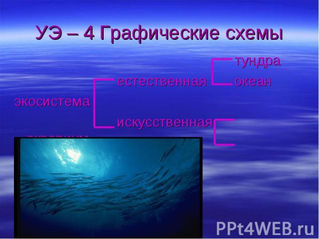 УЭ – 4 Графические схемы тундра естественная океанэкосистема искусственная аквариум