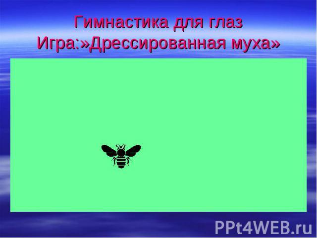 Гимнастика для глазИгра:»Дрессированная муха»